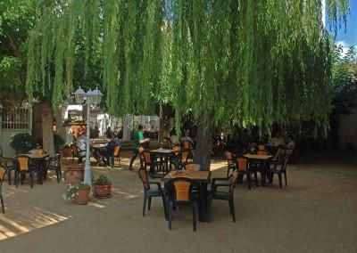 Cafeteria 16